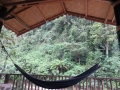 Bukit Lawang hammock
